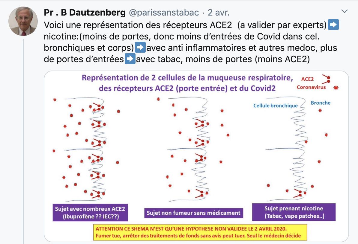 La nicotine agit sur les récepteurs ACE2 et pourrait repousser le Covid-19